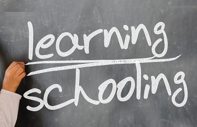 英語はネイティブ圏の学校に行ったほうが会話力は絶対伸びる!(経験済)その5つの理由